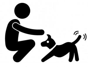 Hund spielen