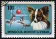 stamp printed in MONGOLIA shows a circus dogs